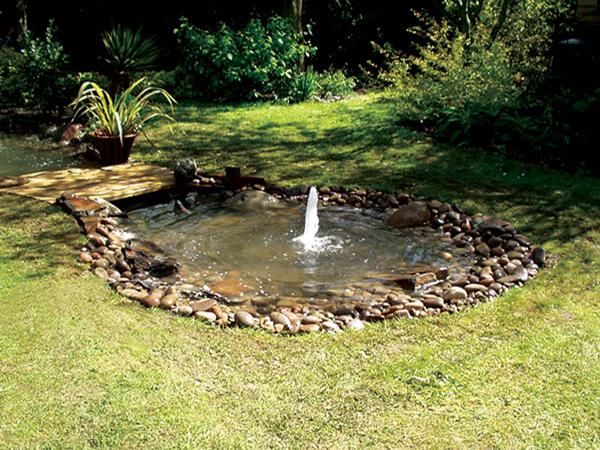 pond-1-600W